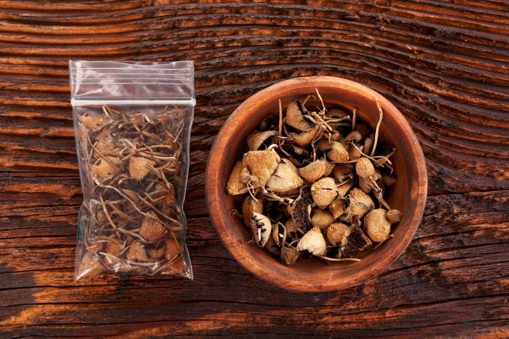 Magic Mushrooms Decriminalized in Oakland